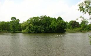 Washington Park Island